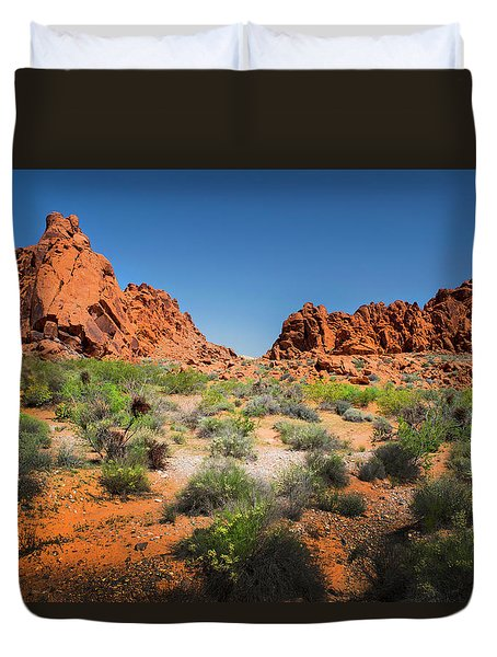 Sandstone Formations Valley Of Fire Duvet Cover by Frank Wilson