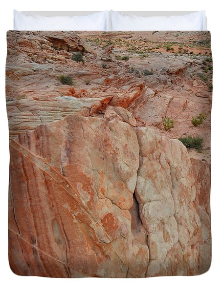 Sandstone Shield In Valley Of Fire Duvet Cover