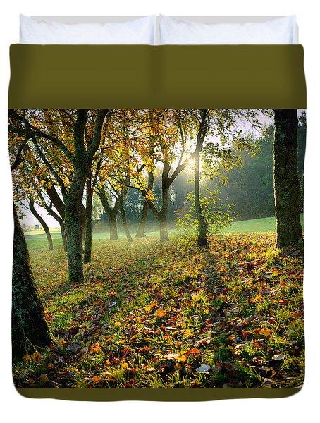 Sandy Water Park 7 Duvet Cover