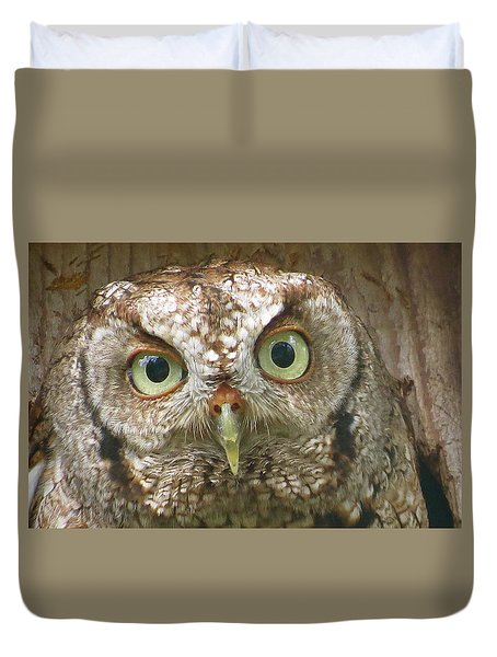 Duvet Cover featuring the painting Sanibel Screech Owl 2 Aka by Melinda Saminski