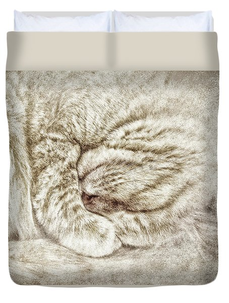 Santa Dreams Duvet Cover by Kathi Mirto