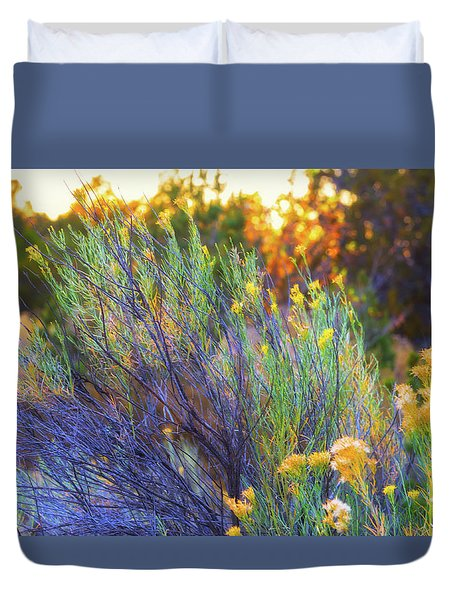 Duvet Cover featuring the photograph Santa Fe Beauty by Stephen Anderson