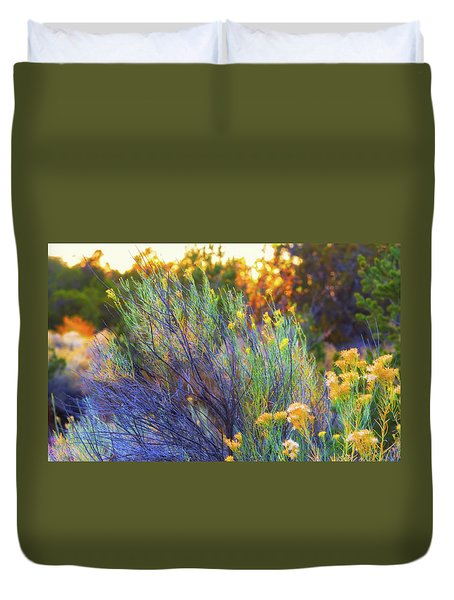 Santa Fe Beauty Duvet Cover by Stephen Anderson