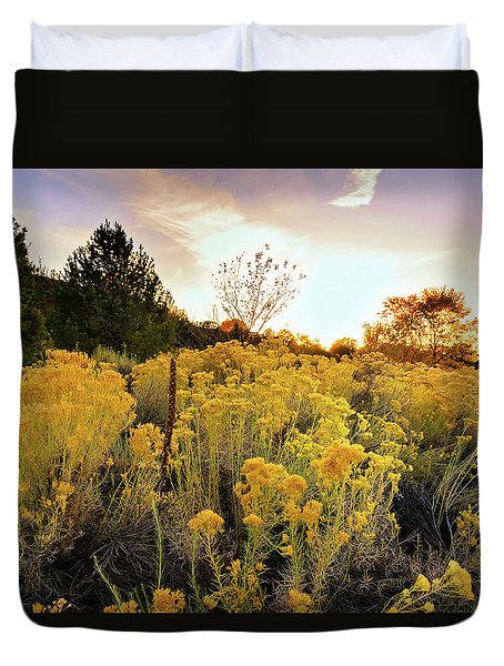 Santa Fe Magic Duvet Cover by Stephen Anderson
