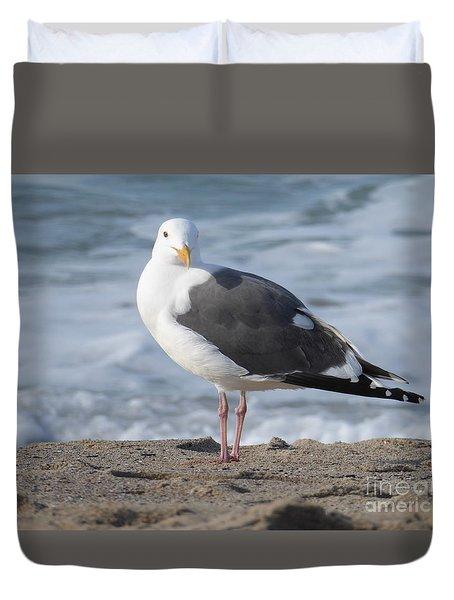 Santa Monica Seagull Duvet Cover