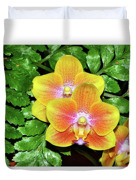 Sara Gold Orchids 003 Duvet Cover by George Bostian