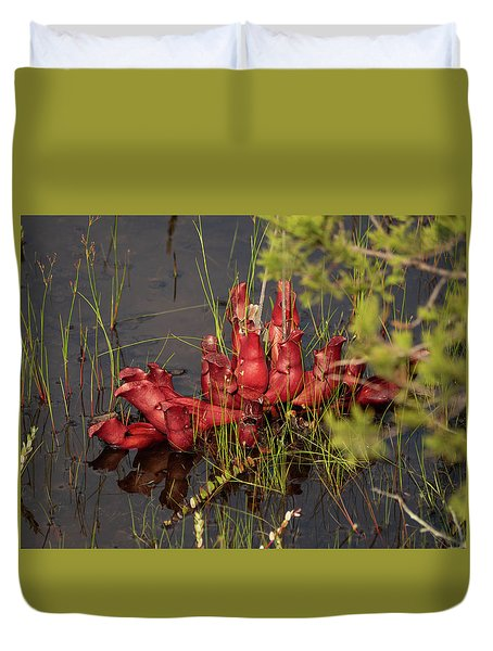 Sarracenia Bug Bat Plant Duvet Cover