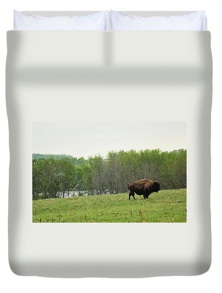Saskatchewan Buffalo Duvet Cover
