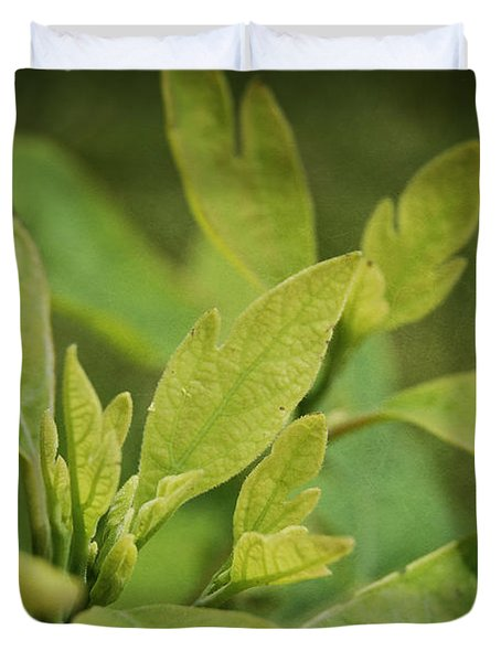 Sassafras Tree Duvet Cover