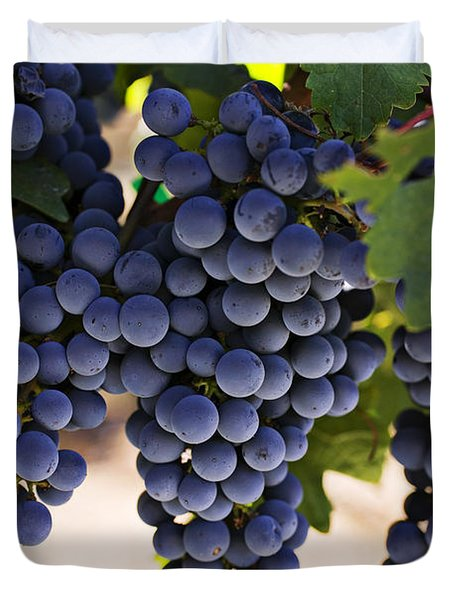 Sauvignon Grapes Duvet Cover