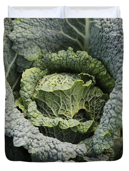 Savoy Cabbage In The Vegetable Garden Duvet Cover by Carol Groenen