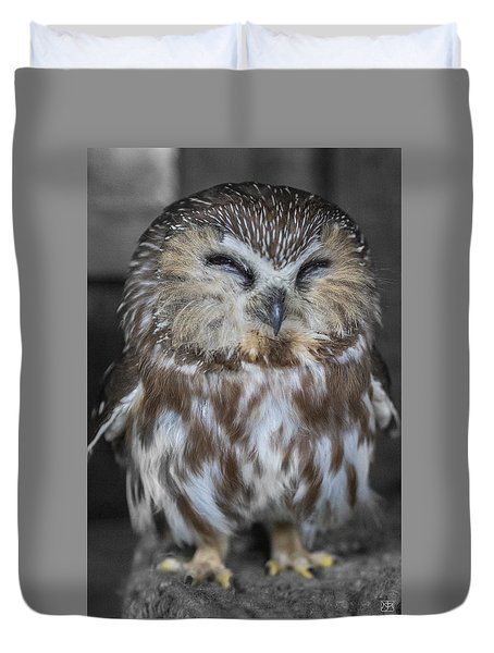Saw Whet Owl Duvet Cover