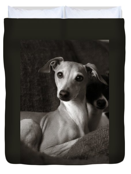 Say What Italian Greyhound Duvet Cover