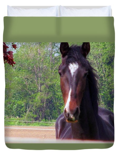Saying Hello Duvet Cover by Tina M Wenger