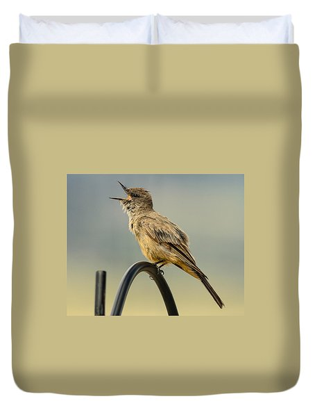 Say's Phoebe Singing Duvet Cover