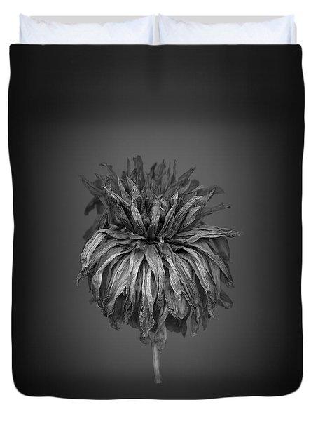 Dried Dahlia 1 Duvet Cover