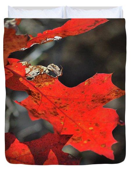 Scarlet Autumn Duvet Cover