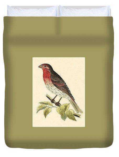 Scarlet Bullfinch Duvet Cover