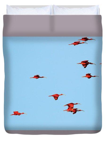 Scarlet Ibis At Caroni Swamp Duvet Cover