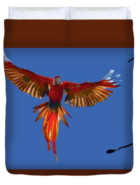 Scarlet Macaw On The Osa Peninsula Duvet Cover