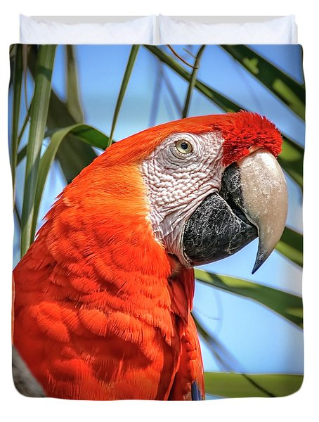 Duvet Cover featuring the photograph Scarlet Macaw by Steven Sparks