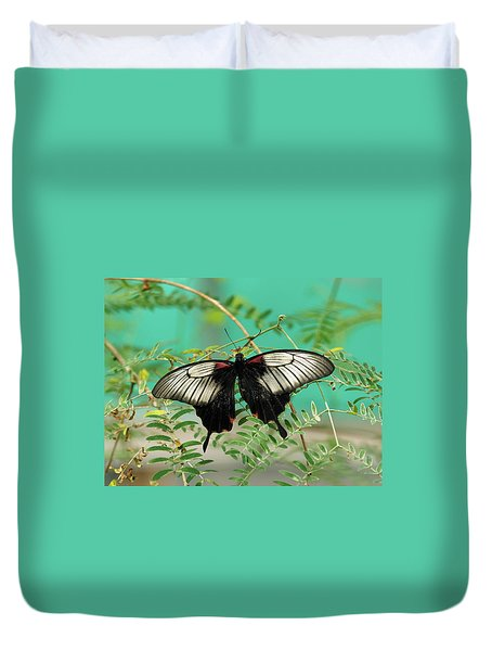 Duvet Cover featuring the photograph Scarlet Swallowtail Butterfly -2 by Paul Gulliver