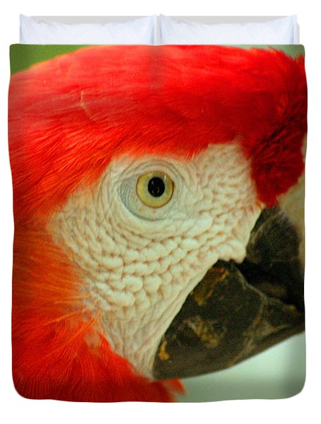 Scarlett Macaw South America Duvet Cover