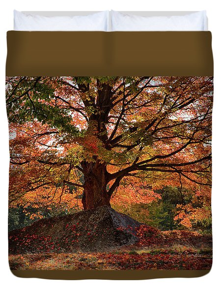 Scenic Byway In Peabody Ma Duvet Cover