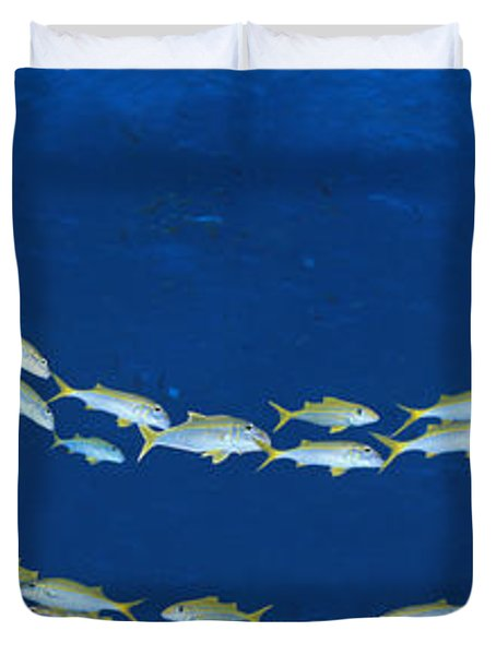 School Of Fish Great Barrier Reef Duvet Cover