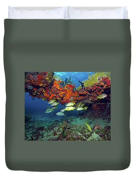 Schooling Fish At Calf Rock Duvet Cover