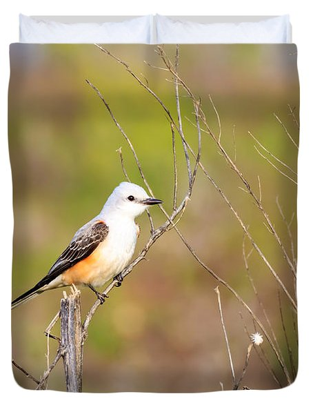 Scissortail Flycatcher On A Twig Duvet Cover