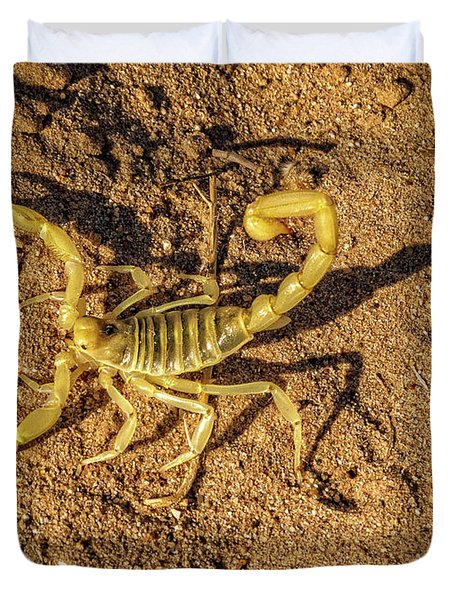 Duvet Cover featuring the photograph Scorpion by Robert Bales