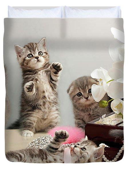 Scottish Fold Cats Duvet Cover