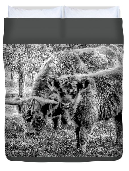 Scottish Highland Cattle Black And White Duvet Cover by Constantine Gregory