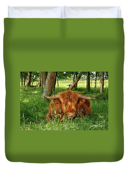 Duvet Cover featuring the photograph Scottish Higland Cow by Patricia Hofmeester
