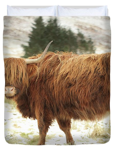 Scottish Red Highland Cow In Winter Duvet Cover