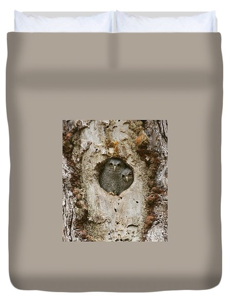 Screech Owl Babies Peeking Out Duvet Cover