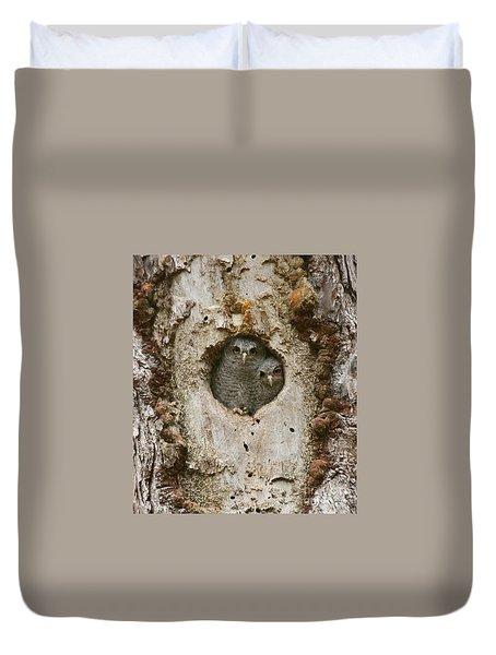 Screech Owl Babies Peeking Out Duvet Cover