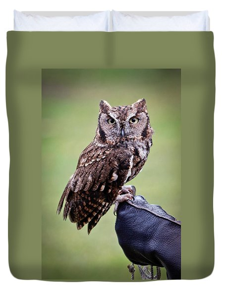 Screech Owl Perched Duvet Cover by Athena Mckinzie