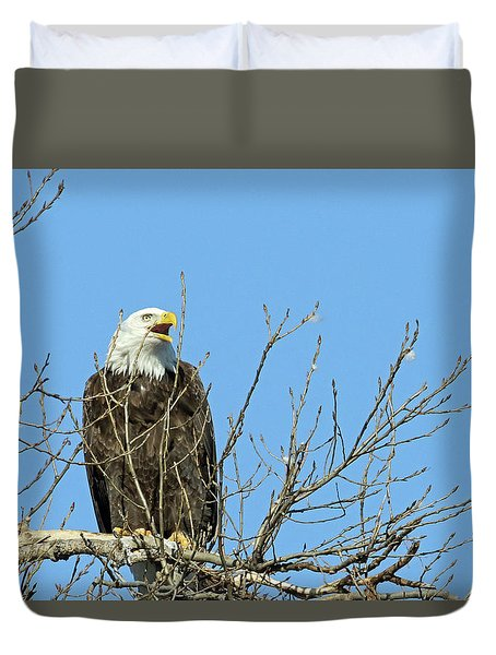 Screeching Eagle Duvet Cover by Brook Burling