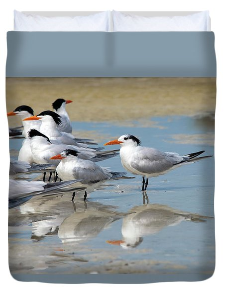 Sea Birds Duvet Cover