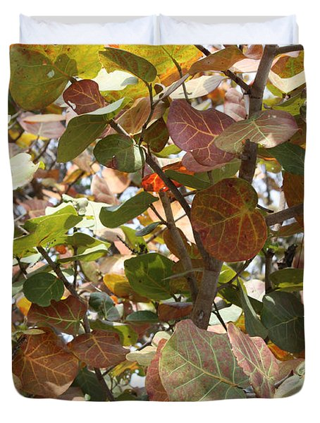 Sea Grapes On Sanibel Duvet Cover by Carol Groenen