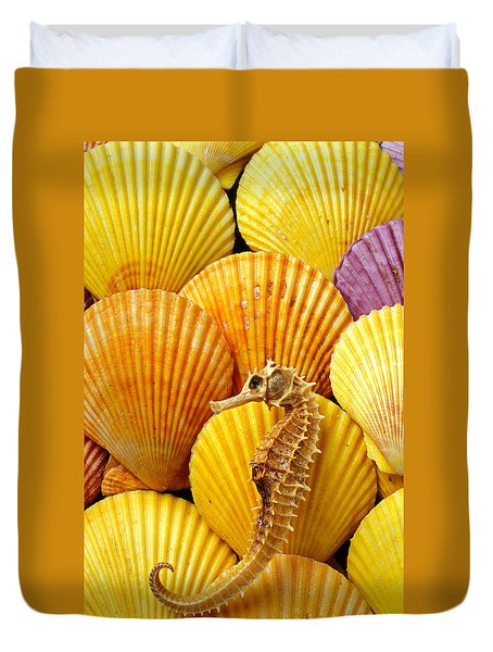 Sea Horse And Sea Shells Duvet Cover by Garry Gay