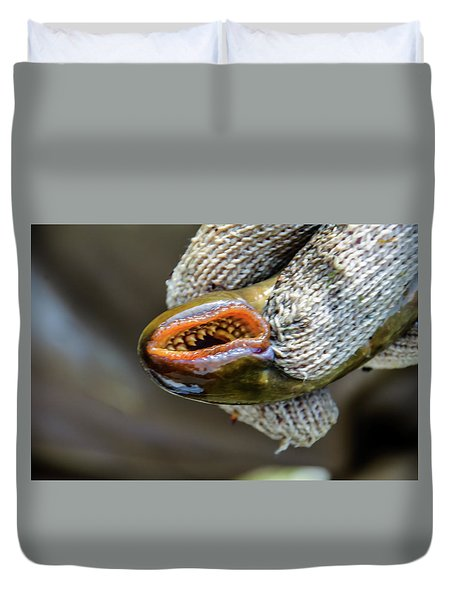 Sea Lamprey Duvet Cover
