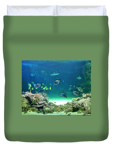 Sea Life Duvet Cover by Kay Gilley