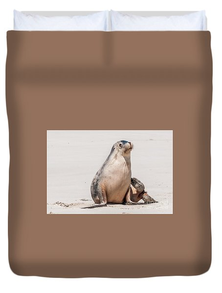 Sea Lion 1 Duvet Cover