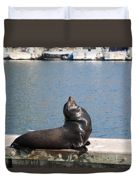 Sea Lion Dreams  Duvet Cover