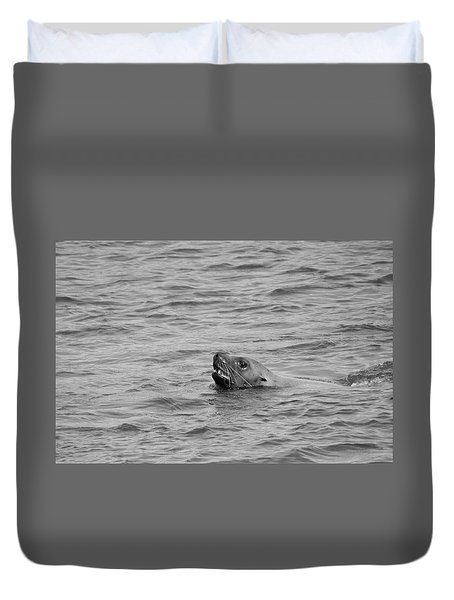 Sea Lion In The Wild Duvet Cover