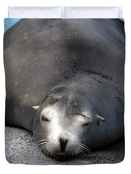 Sea Lion Snooze Duvet Cover