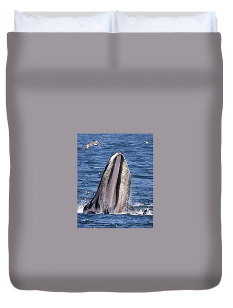 Sea Lions Are Friends, Not Food Duvet Cover
